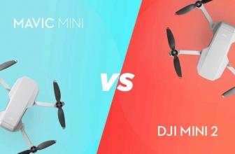 DJI Mavic Mini vs DJI Mini 2: Which One is The Best Mini Drone?